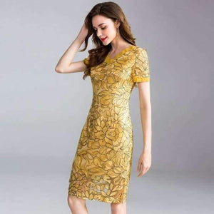 Womens Fashion Summer Party Event Dress 2018 Ladies V-Neck Allover Exquisite Embroidery Lace up Dress Knee Length