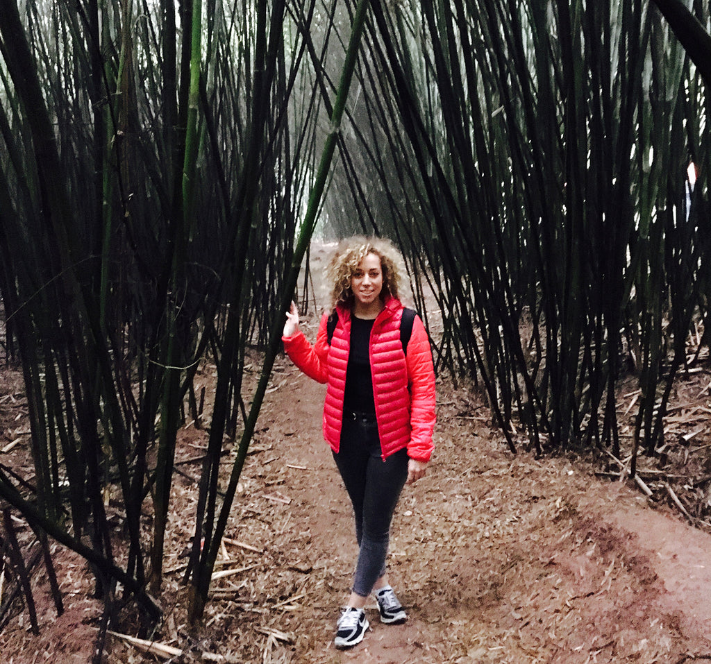 eco warrior taking a walk in the bamboo forest
