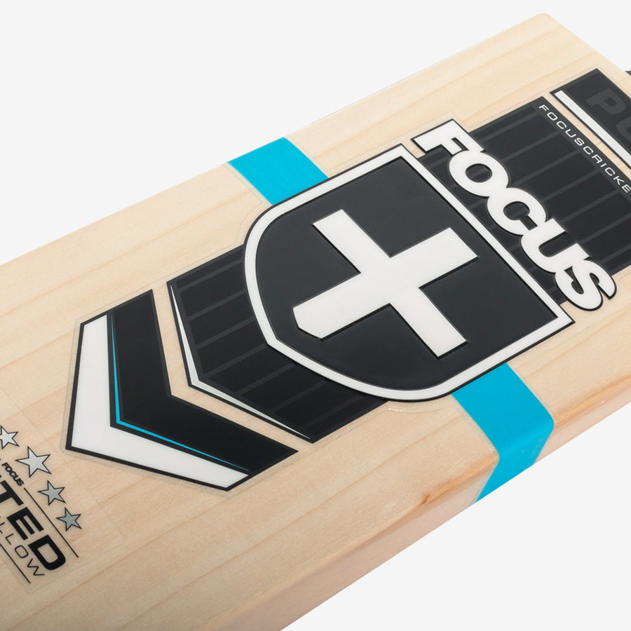 Focus Pure Cricket Bat - Small Mens