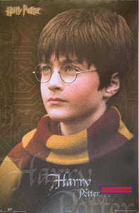 Harry Potter Movie Poster 22 X 33