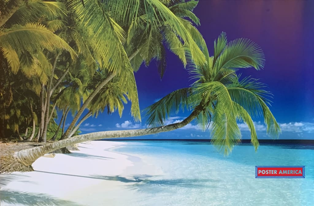 Tropical Beach Horizontal Palm Poster 24 X 36