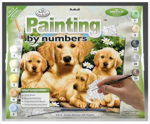 Paint by Numbers  Junior Golden Retrievers