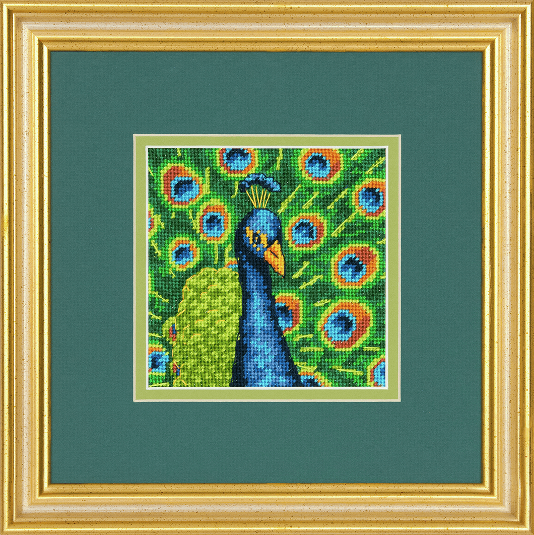 Needlepoint. Colourful peacock