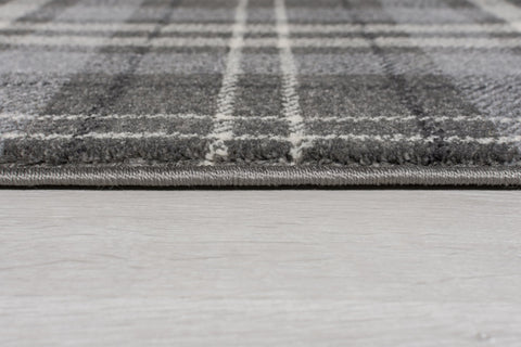 Image of Robert Silver Grey Area Rug