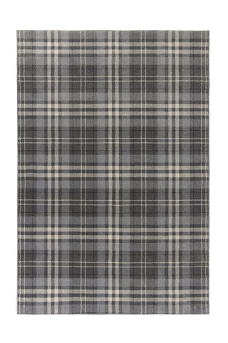 Robert Silver Grey Area Rug