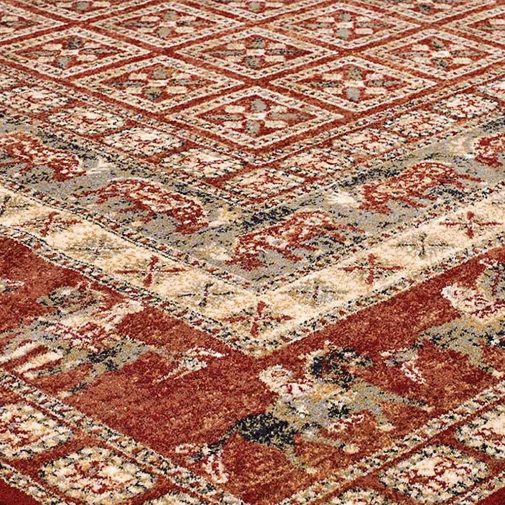 Traditional Royal Red Area Rug RUGSANDROOMS