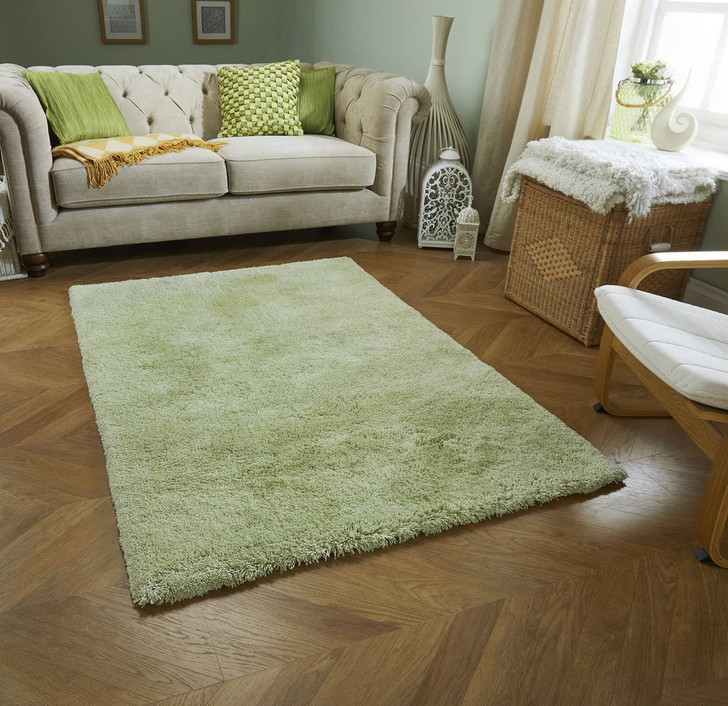 Soft Shaggy Green Area Rug RUGSANDROOMS