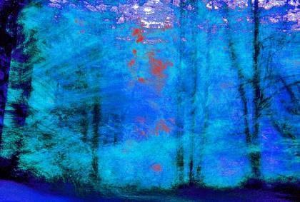 "Daniel Furon Collection ""Blue Trees"" w/coa - Global Images Gallery"