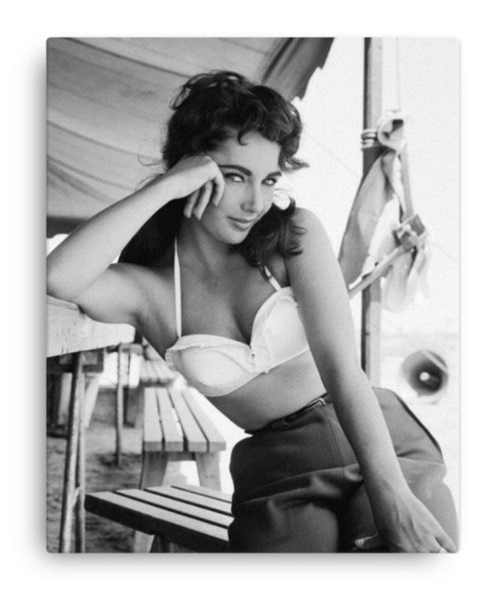"Frank Worth Collection ""Liz Taylor Classic on Set of Giant"" Canvas - Global Images Gallery"