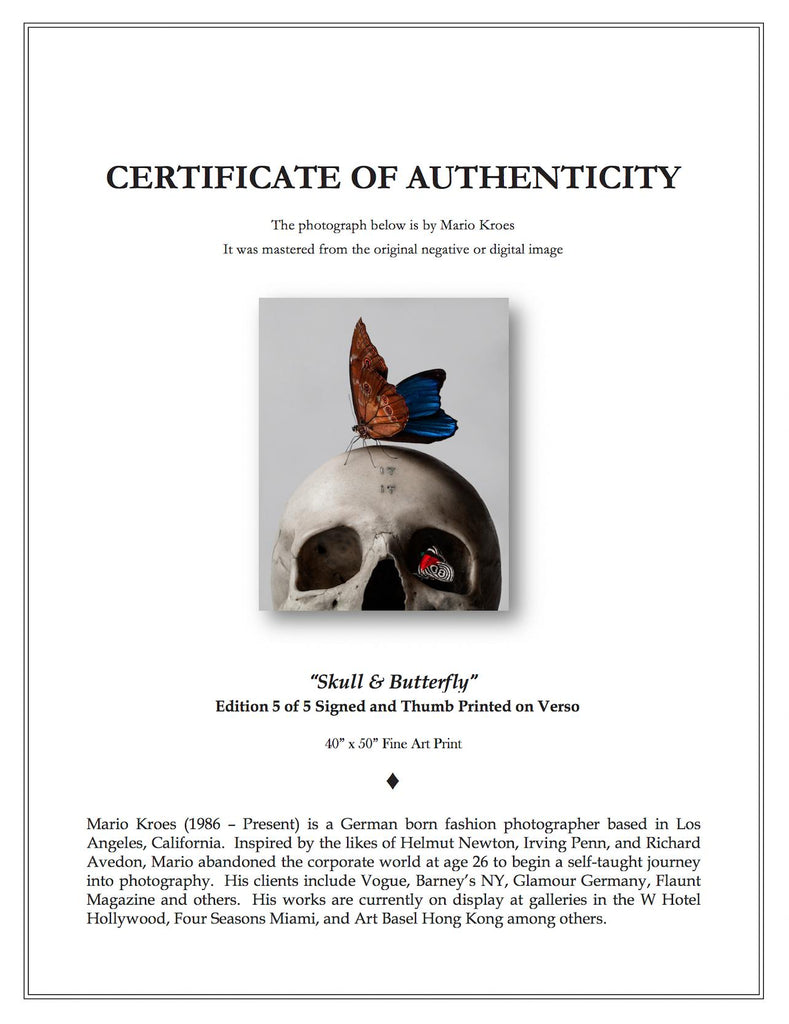 Mario Kroes Photography Certificate of Authenticity Example