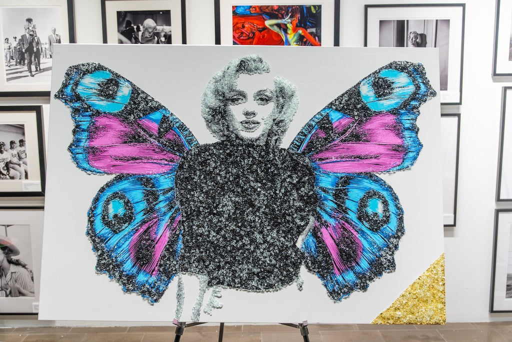 Monroe Butterfly-Global Images Gallery-Global Images