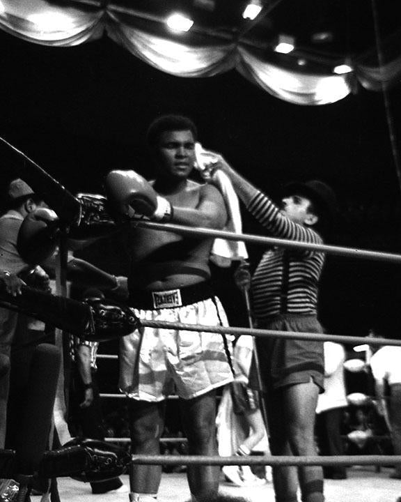 Whitaker Historic Photography: Muhammad Ali In Ring 8-Fine Art Print-Global Images Gallery-16x20-Global Images