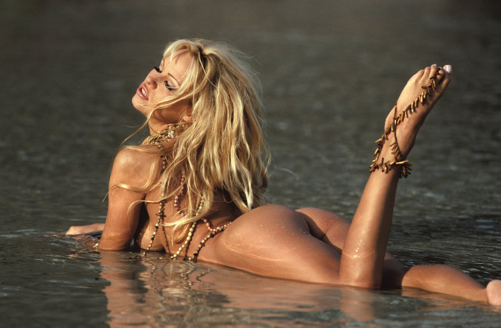 """Pamwatch"" Pamela Anderson by Stephan Wayda-Global Images"