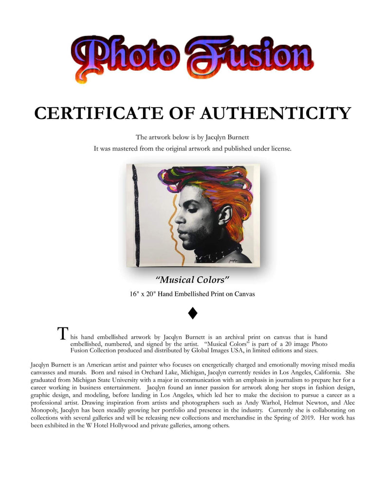Photo Fusion: Musical Colors-Limited Edition Embellished Print-Global Images Gallery-16x20-Global Images