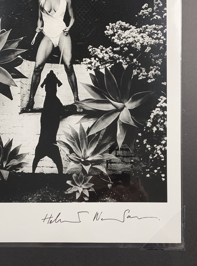"Rare Signed ""Raquel Welch, Beverly Hills 1981"" Vintage Silver Gelatin Print by Helmut Newton Photography (Inquire for Pricing)-20x24 Signed Vintage Silver Gelatin-Global Images Gallery-Global Images"