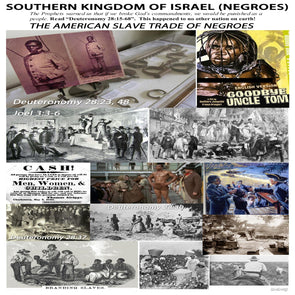 "SOUTHERN KING OF ISRAEL ""NEGROES"" CAMP SIGN"