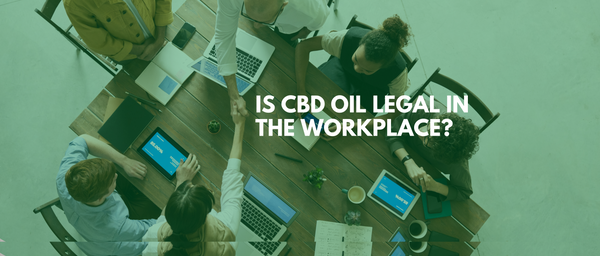 Is CBD oil legal in the workplace?