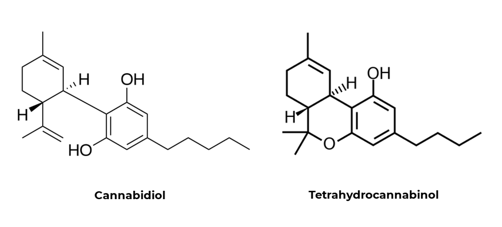 CBD and THC chemical structure