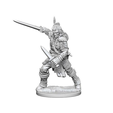 D&D Human Fighter M Miniature
