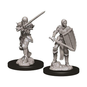 D&D - Nolzur's Marvelous Unpainted Female Human Fighter