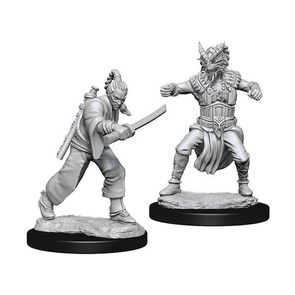 D&D - Unpainted Male Human Monk