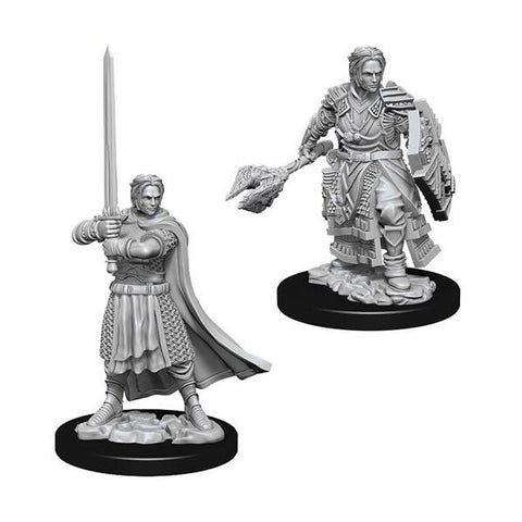 D&D Nolzurs Marvelous Unpainted Male Human Cleric
