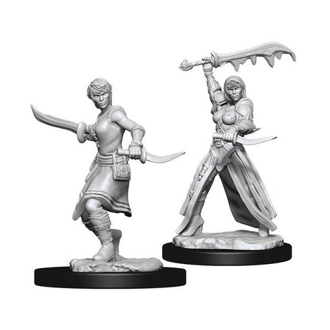 D&D Nolzurs Marvelous Unpainted Miniatures Female Human Rogue