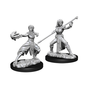 D&D Nolzurs Marvelous Unpainted Miniatures Female Half-Elf Monk