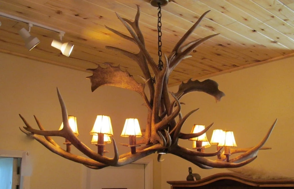 8 Light Elk/Fallow Elongated Antler Chandelier (AWC-21)