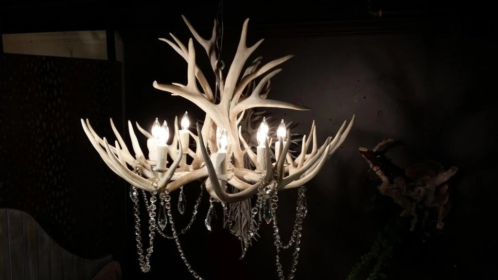 8 Light Mule Deer Antler Chandelier (Sun Bleached Finish) (AWC-4SB)