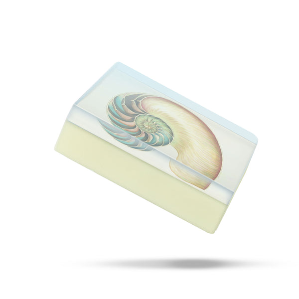 GS2217N: Nautilus Body Soap