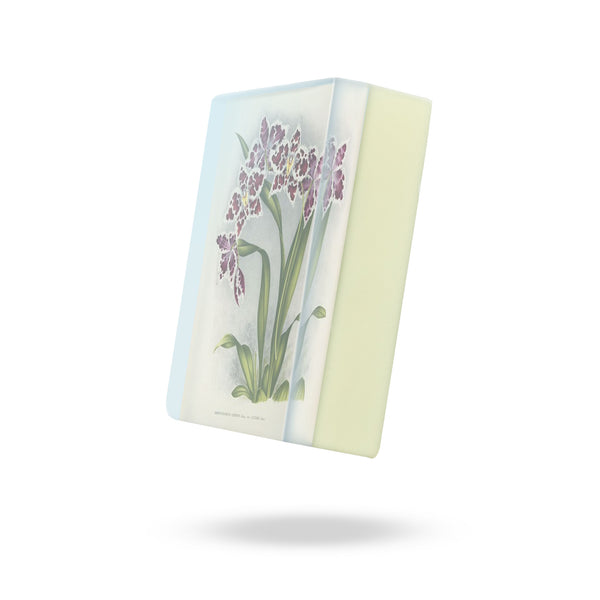 GS2200P: Purple Odontoglossum Orchid Body Soap