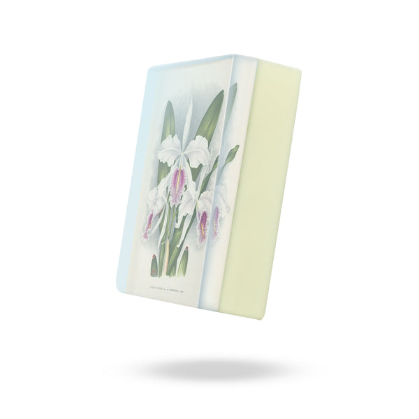 GS2200W: White Cattleya Orchid Body Soap