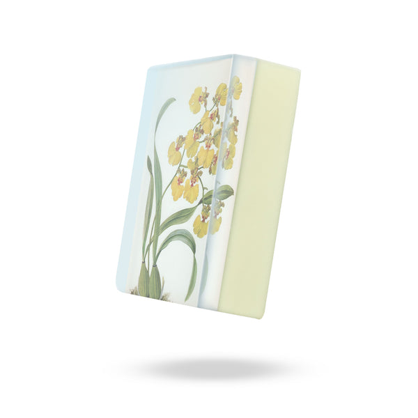 GS2200Y: Yellow Oncidium Orchid Body Soap