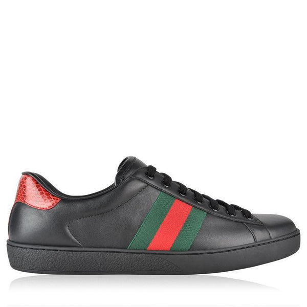 Gucci GUCCI New Ace Web Trainers SOLEHEAVEN