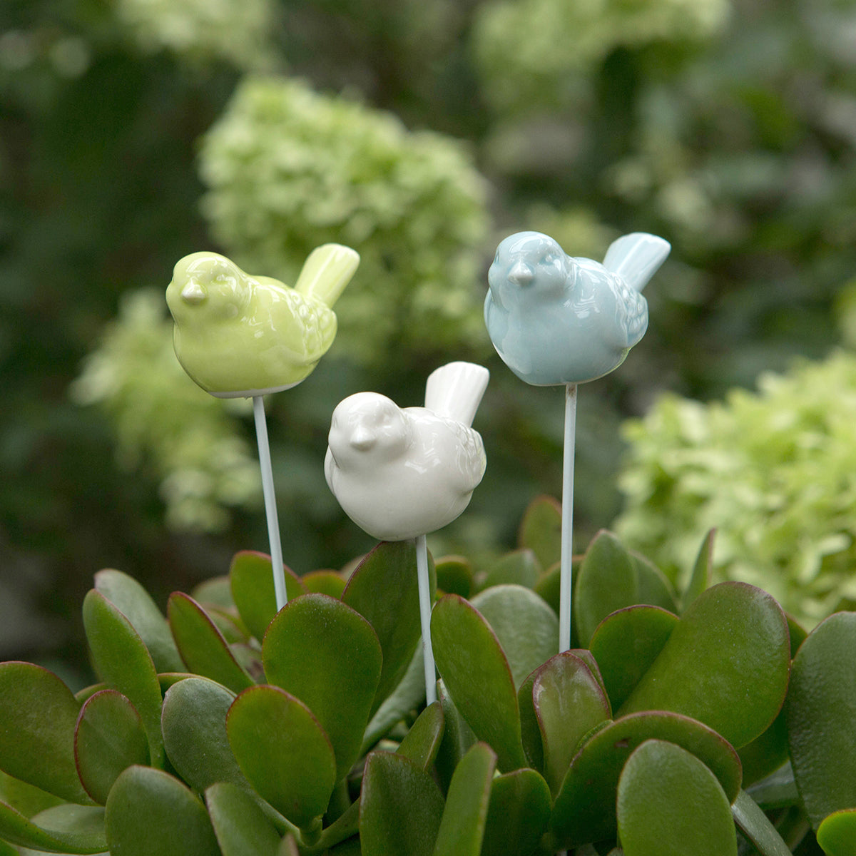 Porcelain Bird Planter Stake 3pc Assortment