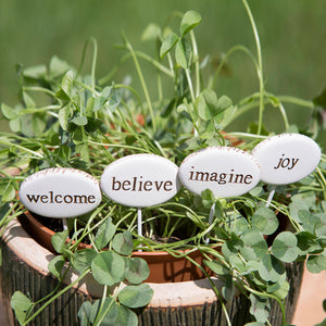 Mini Garden Sign Assortment