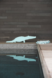 Miami Alligator