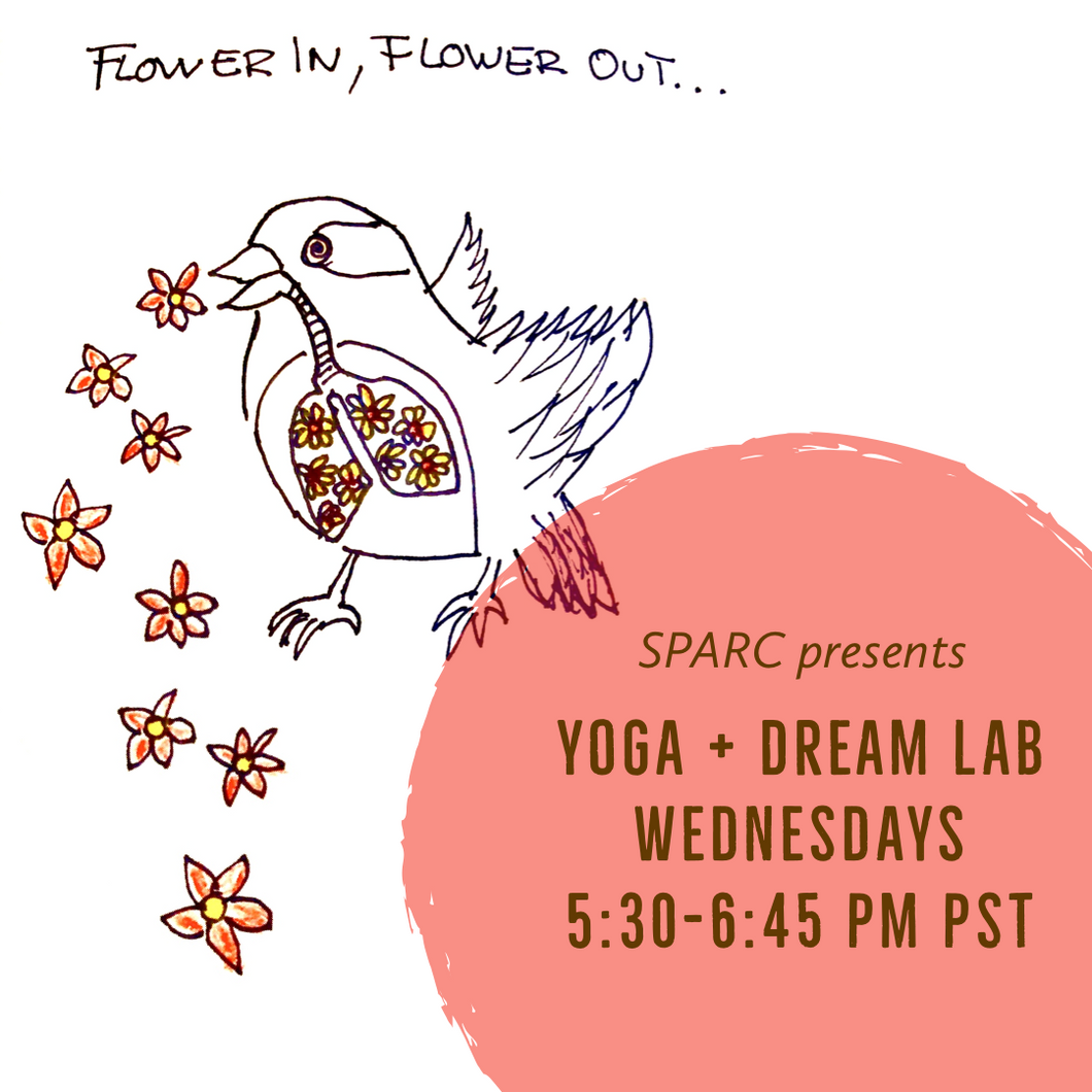 Yoga + Dream Lab Donation