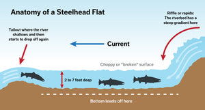 Identifying Classic Steelhead Water: Flats | by Jd Richey