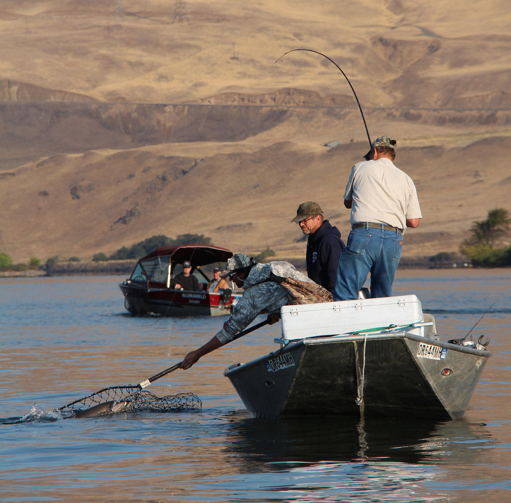 There are multiple ways to target salmon and steelhead at the mouths of the Deschutes and Klickitat rivers. These happy anglers bring a chinook to the net, caught while hover fishing.