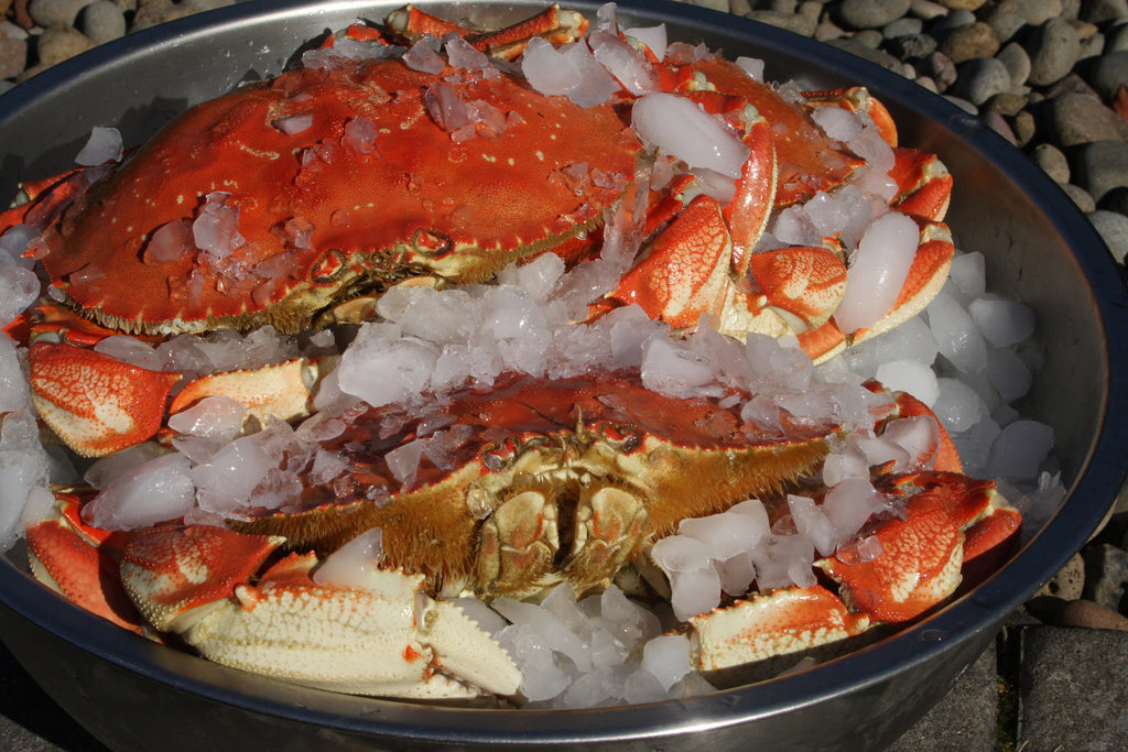 offshore fish and crabs