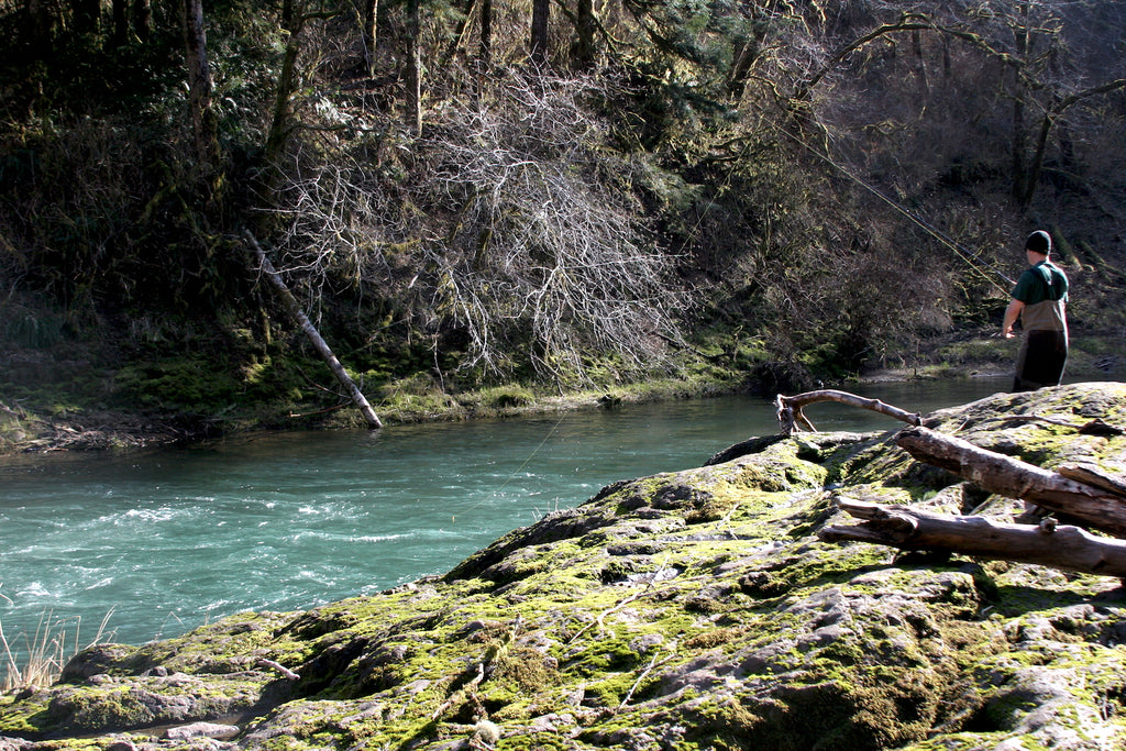 oregon fishing trask river steelhead