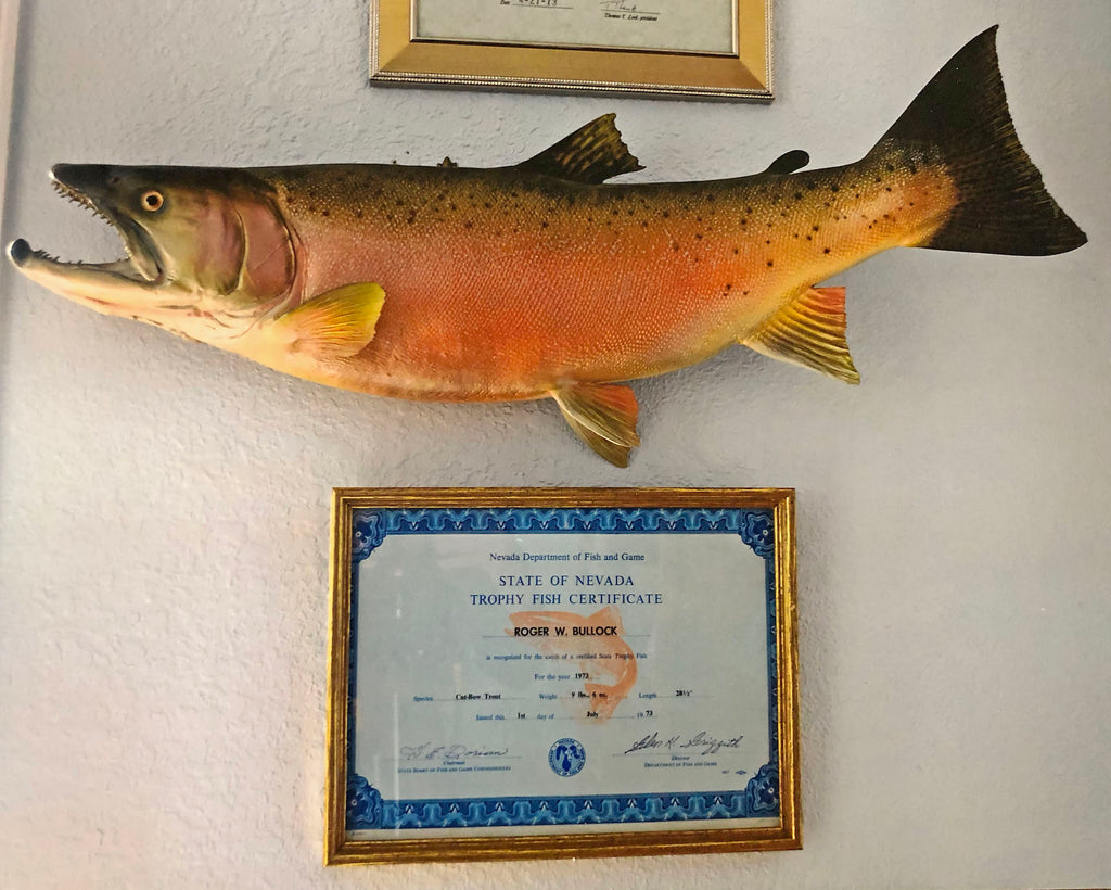 state of nevada trophy fish certificate cutbow rainbow cutthroat fishing fish