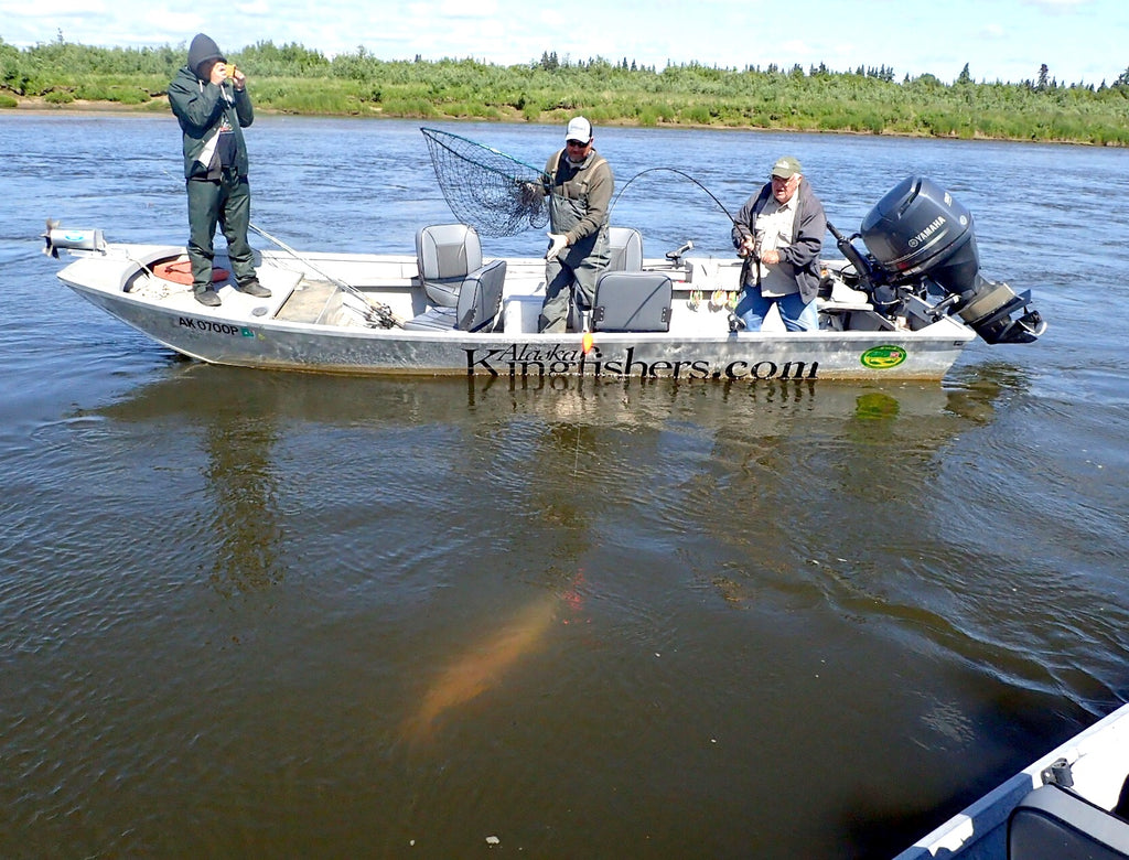 nushagak fishing salmon kings boat