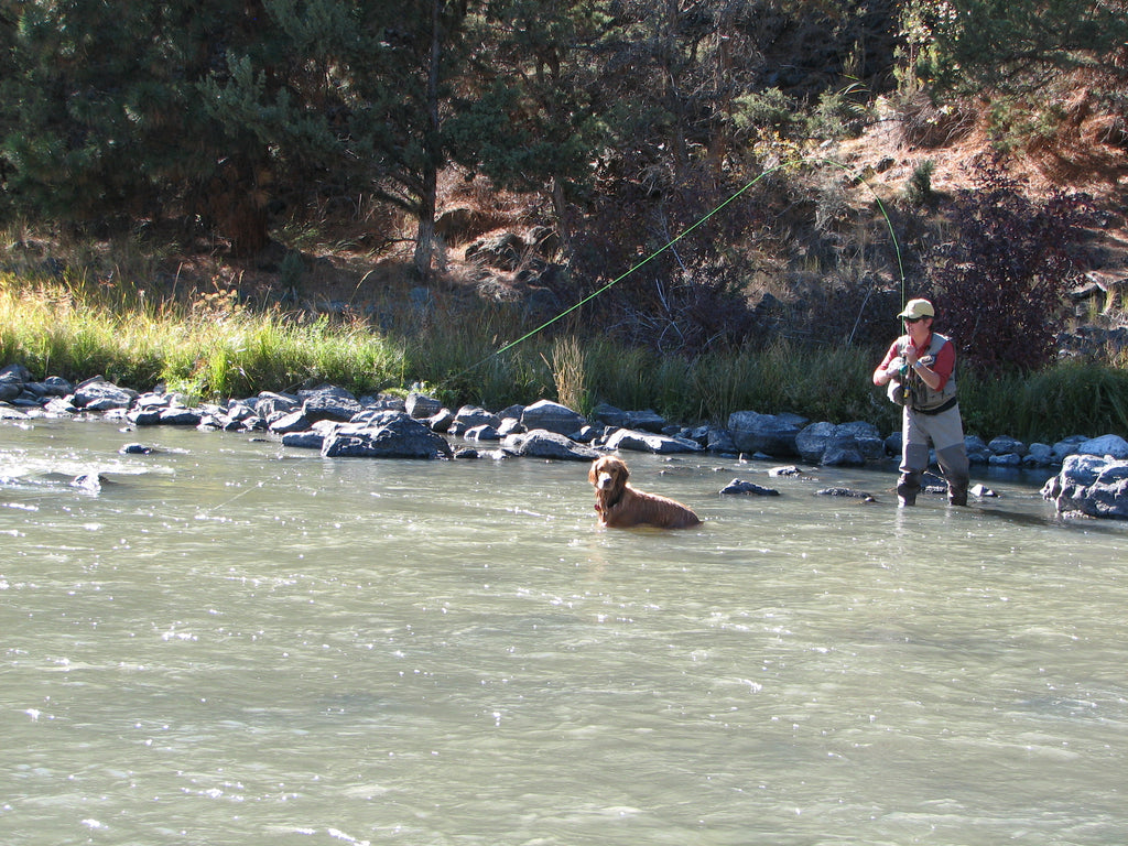 gary lewis fly fishing