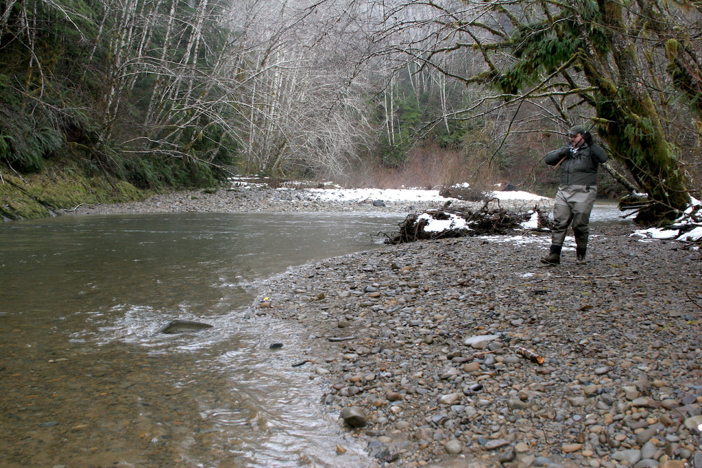 steelhead fishing salmon creek