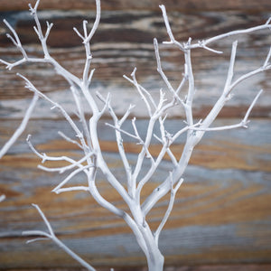 White Manzanita Jewelry Tree Duo