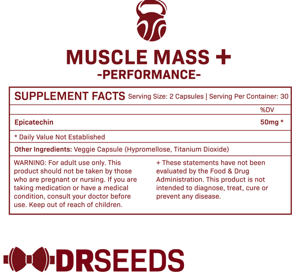 Muscle Mass+ 3-Pack