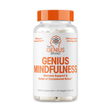 Genius Mindfulness